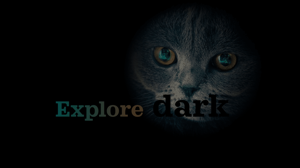 Dark mode poster showing a cat in dark.